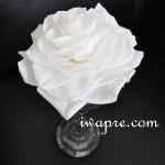 プリザーブドフラワーの白い大輪のローズメリア